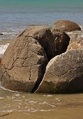pic of maori  - Moeraki Boulders are perfectly spherical rocks on the beach at Moeraki near Oamaru - JPG
