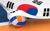 picture of volleyball  - Flag of South Korea with championship volleyball ball on volleyball court - JPG