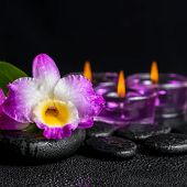 stock photo of calla  - spa still life of purple orchid dendrobium green leaf Calla lily and candles with drops on black zen stones closeup - JPG
