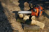 image of chainsaw  - Chainsaw to cut a wooden background trunk and sawdust  - JPG