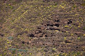 picture of cave-dweller  - Barranco de Guayadeque natural caves in the slopes of the barranco some made habitable - JPG