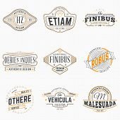 Set Of Hipster Vintage Labels, Logotypes, Badges. Thin Line Design Templates poster