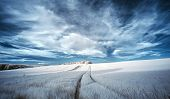 picture of surreal  - Surreal false color infrared Summer landscape over agricultural fields - JPG
