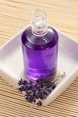 stock photo of massage oil  - lavender massage oil  - JPG