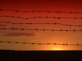 stock photo of barbed wire fence  - Barbed wire on the sky background - JPG