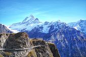 Beautiful Outdoor Scene Of The Mountain With Blue Sky At First Grindelwald,swizerland.scenic Panoram poster
