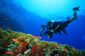 Coral reef, tropical fish and scuba diver with a big camera
