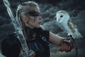 beautiful white owl, Viking blonde woman with shield and sword, braids in her hair. poster
