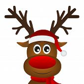 Funny Cartoon Christmas Reindeer On A White Background poster