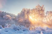 Scenery Winter In Sunbeams. Snowy Nature. Christmas Background. Amazing Winter Landscape In Sunlight poster