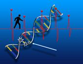 DNA strand and heartbeat cardiogram. 3D rendering poster