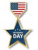 Veterans Day Star Icon Logo. Realistic Illustration Of Veterans Day Star Icon Logo For Web Design Is poster
