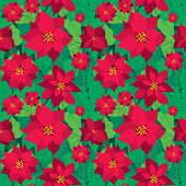 Vector Christmas Seamless Pattern With Red Poinsettia Flowers And Green Leaves On Green Background.  poster