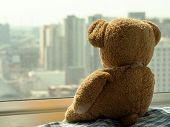 Sad Brown Teddy Bear Doll Sitting Alone On Window Shield Looking Outside, Feel Alone, Sad And Disapp poster