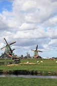 The village - an ethnographic museum in Holland. Three windmills on a green meadow, among deep chann