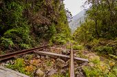 Old Railway In A Tropical Forest