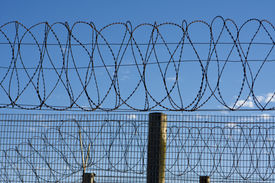 picture of barbed wire fence  - Coils of barbed wire on top of a fence provide security at a penitentiary in South Africa - JPG