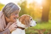 picture of dog-walker  - Senior woman hugs her beagle dog in countryside - JPG