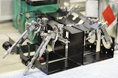 picture of gun shop  - Pneumatic guns on a stand - JPG