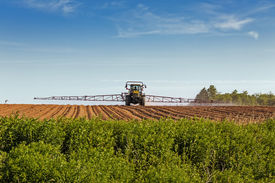 stock photo of potato-field  - A large agricultural sprayer with wide booms spraying a field of potatoes in rural Prince Edward Island - JPG
