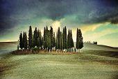 pic of senesi  - Idyllic Tuscany rural landscape near Pienza Vall d - JPG