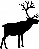 image of rudolf  - Vector illustration of a realistic Christmas reindeer - JPG