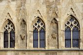 foto of century plant  - Detail of the Gothic window - JPG