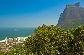 stock photo of gneiss  - View of Sao Conrado Beach Through Trees and Pedra da Gavea Rock - JPG