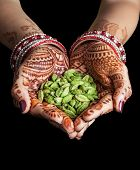 pic of cardamom  - Woman hands with henna holding green cardamom spices isolated on black background with clipping path - JPG