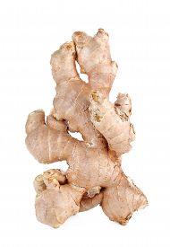 picture of zingiber  - Fresh ginger zingiber root isolated on white background - JPG