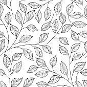 Постер, плакат: Vector Seamless Contour Floral Pattern