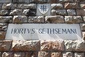 stock photo of judas  - inscription above entrance to Garden of Gethsemane - JPG