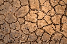 foto of drought  - brown texture of polygons of desiccation caused by drought - JPG