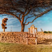Love Chair At The Love Lakes Dubai With The Backdrop Of Love Tree. A New Tourist Destination In The  poster