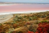 Rare Phenomena - Landscape Of Salt Kuyalnicky Liman (lake) With Red Water,odessa,ukraine