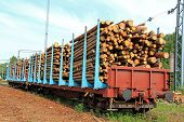stock photo of freightliner  - Wooden logs in rail cars at a railway station waiting for transport - JPG