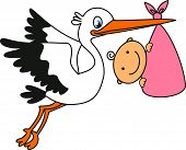 stock photo of stork  - Stork carrying a Baby - JPG