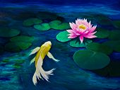 pic of koi  - A yellow butterfly Koi swims towards a pink water lily - JPG