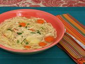 pic of parsnips  - Bowl of chicken noodle soup with carrots parsnips and parsley