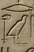 Closeup Of Ancient Egypt Images And Hieroglyphics