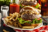 picture of hamburger  - Gourmet Hamburger with Lettuce Tomato and Onions - JPG