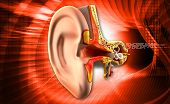 pic of inner ear  - Digital illustration of Ear anatomy on colored background - JPG