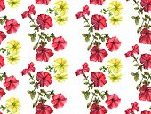 image of petunia  - Seamless watercolor petunia pattern - JPG