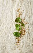 stock photo of cumin  - Kaffir lime leaves - JPG