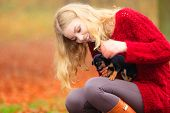 picture of petting  - Pets and people pet adoption. Woman playing with her little dog pet outdoor hugging lovingly embraces her puppy.