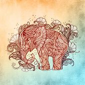 image of indian elephant  - Beautiful hand - JPG
