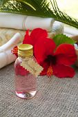 image of hibiscus  - A bottle of hibiscus shampoo - JPG