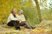 pic of elderly  - Happy elderly couple sitting in autumn park  - JPG