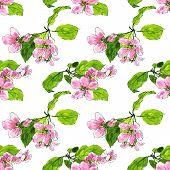 Постер, плакат: seamless pattern with apple blossoms