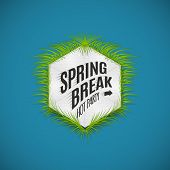 pic of spring break  - Festival spring break realistic badge can be used for flyers and presentations - JPG